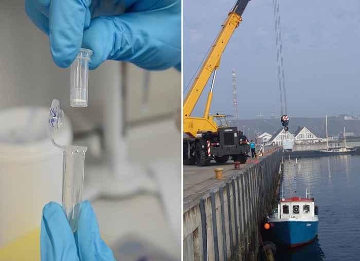 investigación de ecosistemas marinos