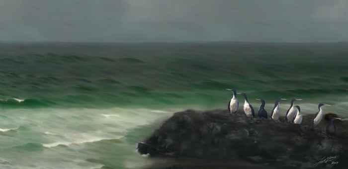 pingüinos antiguos en Chatham Island