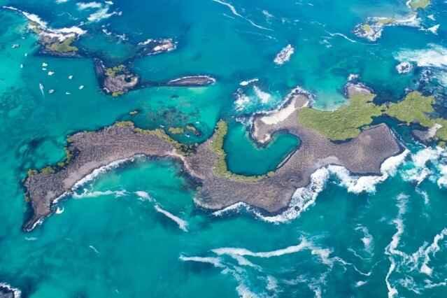 Las Tintoreras, Galápagos
