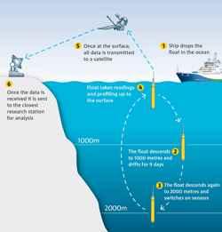 flotadores Argo