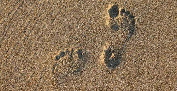 huellas neardentales en una playa