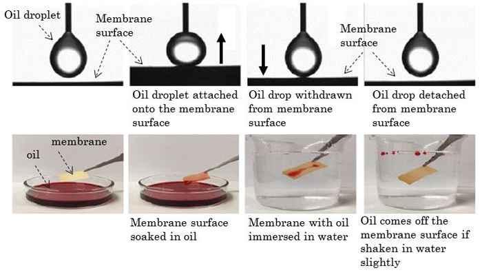 membrana para limpieza de petróleo
