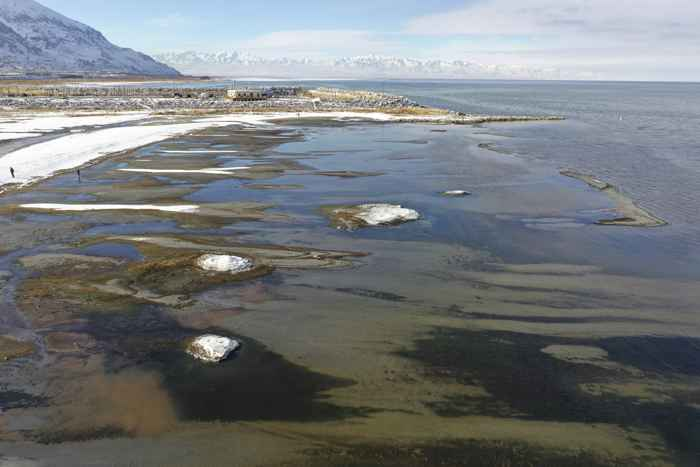 panorámica de montículos de sal en el Gran Lago Salado