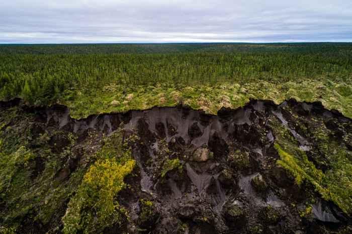 permafrost siberiano