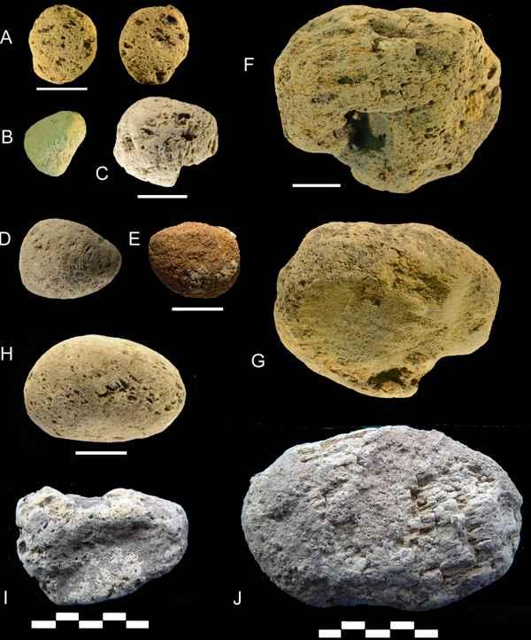 piedras pómez neardentales