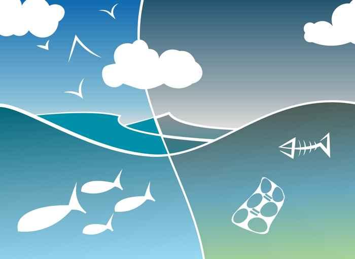 colapso del ecosistema marino