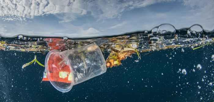 contaminación plástica en el mar