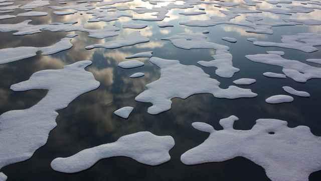 el hielo marino del Ártico en 2011