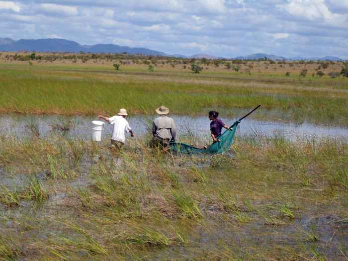investigadores en las sabanas de Rupununi