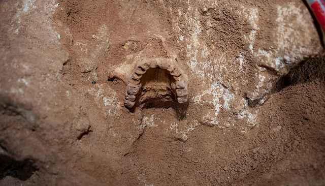 restos humanos de una isla del Mediterráneo