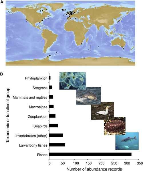 cobertura de especies del estudio