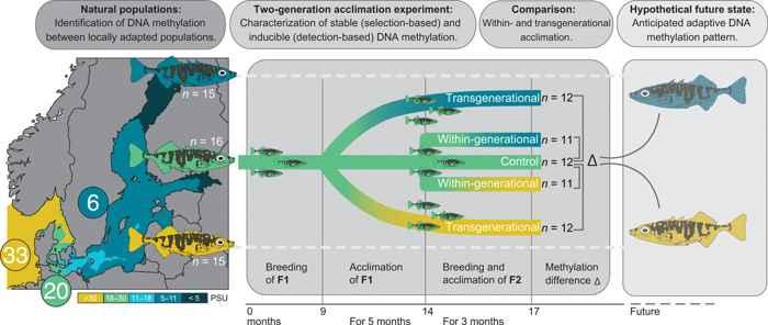 investigación epigenética de espinosos