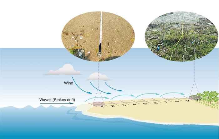 plásticos arrastrados a la costa