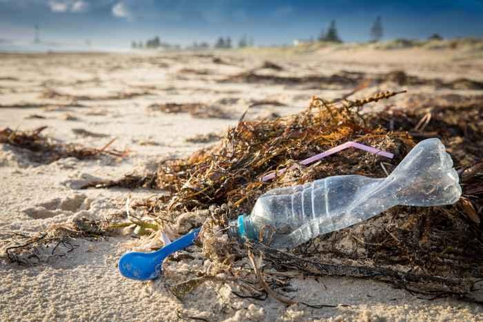plásticos en un playa