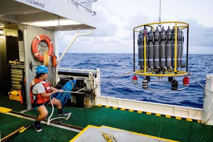 rosetta de investigación oceánica