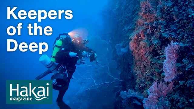 buceo en las profundidades