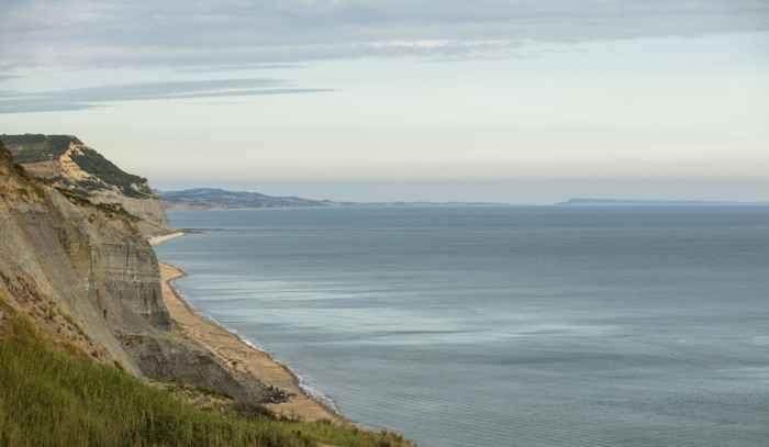costa de Charmouth