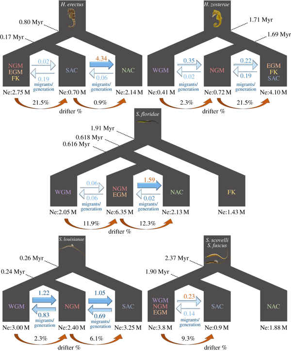 dispersión de genes con el rafting