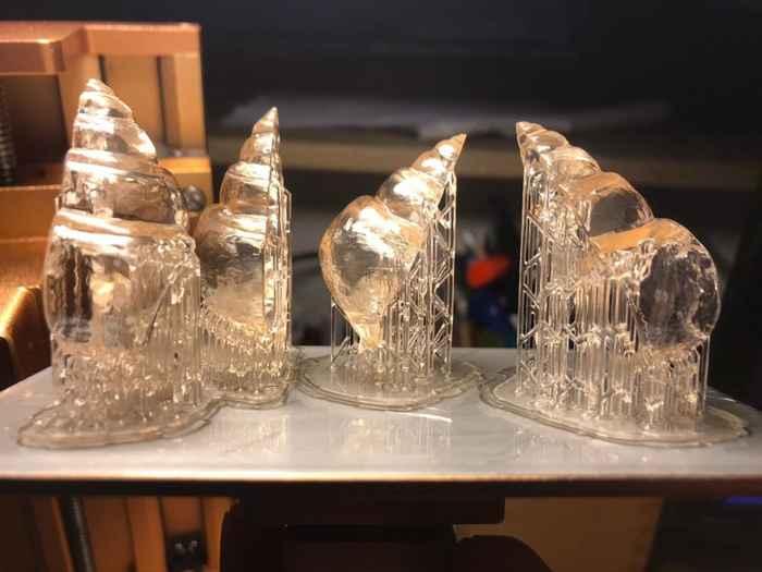 modelos 3D de conchas