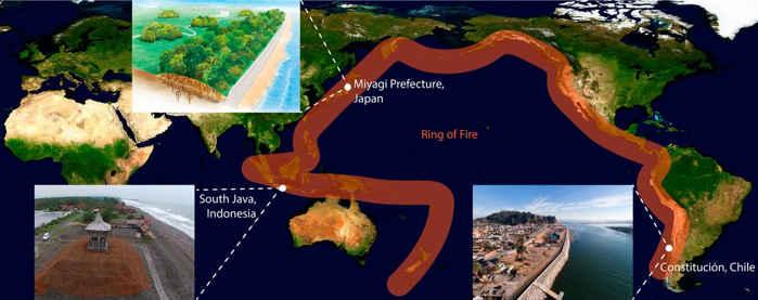 parques de mitigación de tsunamis