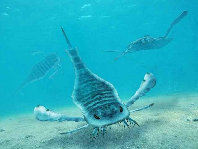 composición artística e un Eurypterus