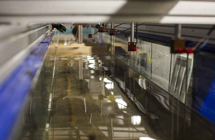 experimento de inundación de islas
