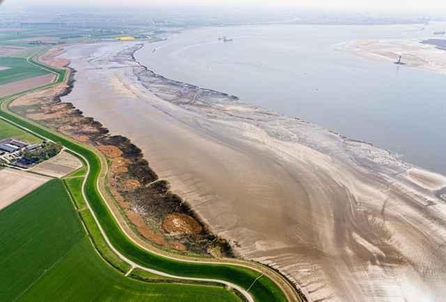 marismas de Westerschelde, Países Bajos