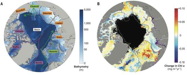 tasa de clorofila en el Ártico