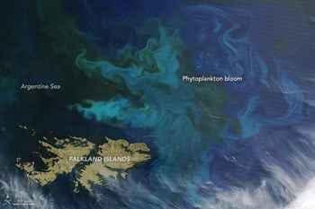 cambio de color en el océano por el fitoplancton