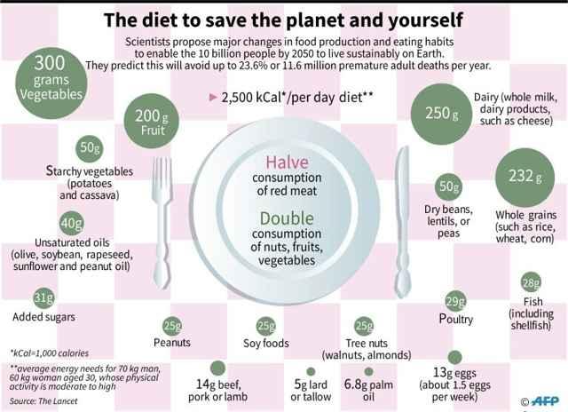dieta saludable para el planeta