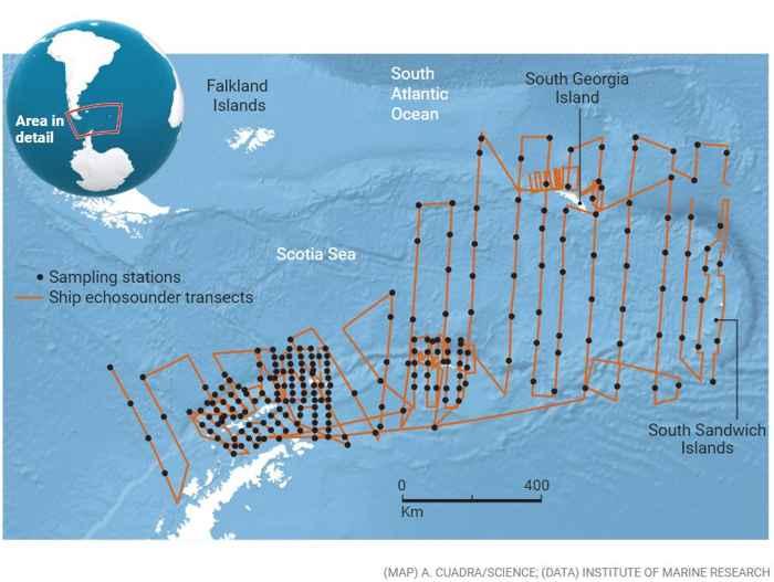 encuesta de krill antártico
