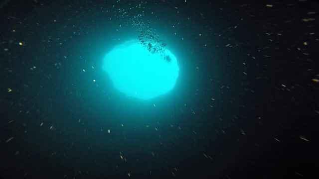agujero azul Amberjack
