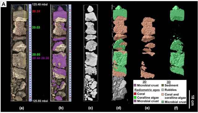 fósiles de microbialitas