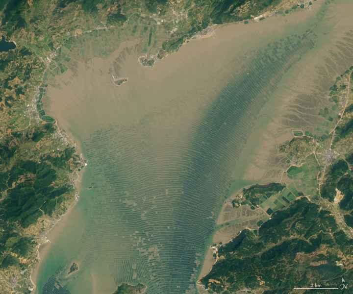 granjas de algas en Sansha Bay, China