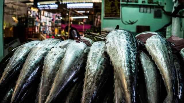 lonja de pescado