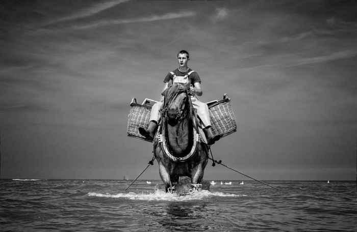 pesca a caballo de Oostduinkerke