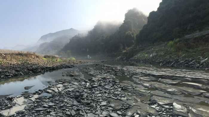 biota de Qingjiang en el río Danshui