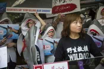 protesta contra la pesca de tiburones