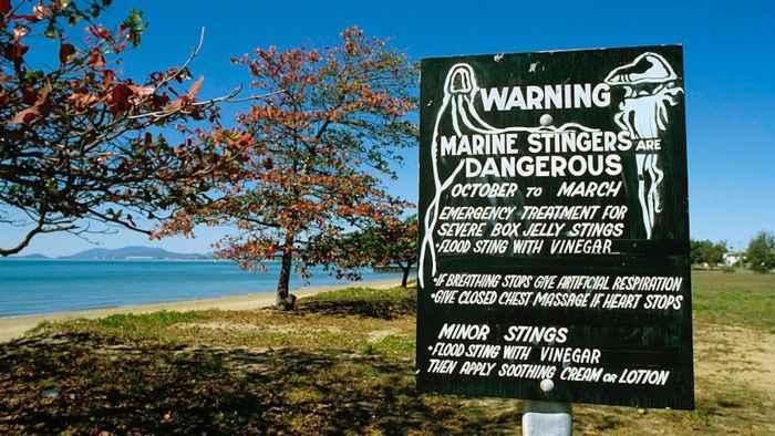 cartel de aviso de medusas en Australia