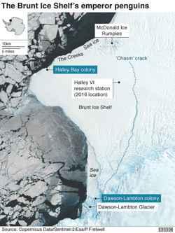 colonias de pingüinos en la Plataforma de hielo Brunt