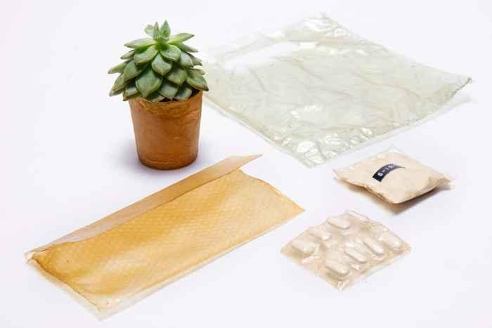 Shellworks fabrica objetos con caparazones