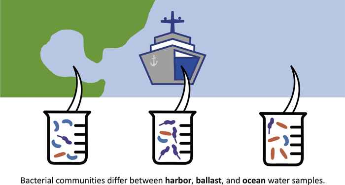 transporte de microbios en el agua de lastre
