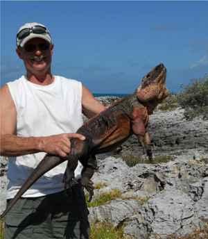 John Iverson  con una iguana de roca de Allen Cay