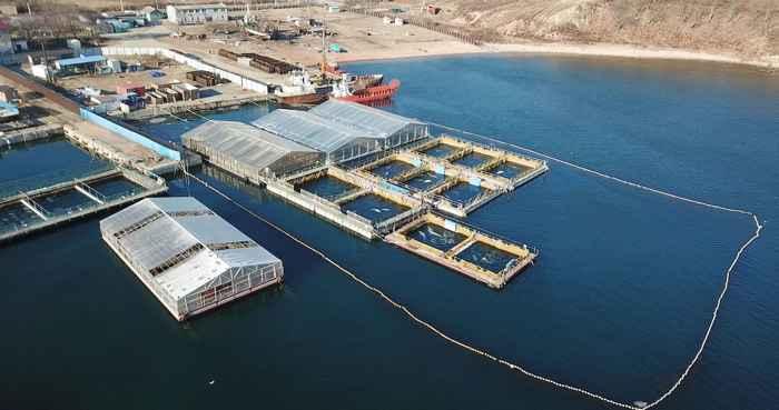 cárcel de ballenas en Nakhodka, Rusia