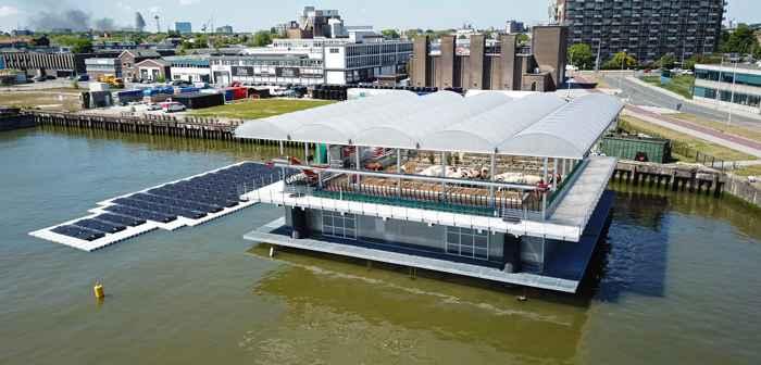 lechería flotante en los Países Bajos