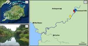 sistema del río Abatan, Filipinas