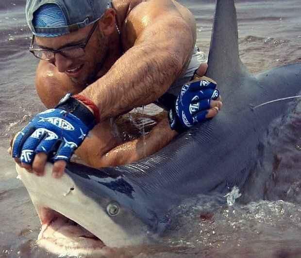 Elliot Sudal lucha con tiburones