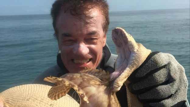 Rick Trippe observa la lucha entre una serpiente marina y un pez piedra