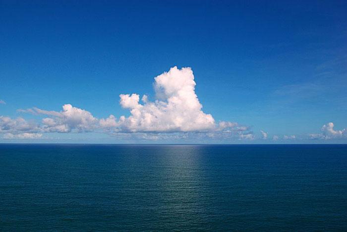 se incrementa la acidificación de los océanos