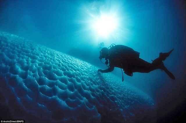 buceo bajo iceberg